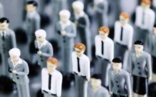 Как проходит обучение арбитражных управляющих, единая программа подготовки