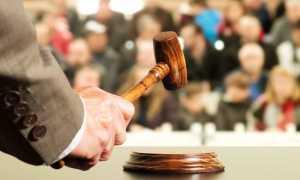 Как заработать на аукционах по банкротству: полезные советы и нюансы проведения торгов