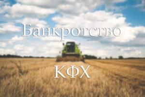 Особенности банкротства крестьянского фермерского хозяйства. Что не могут забрать у фермера
